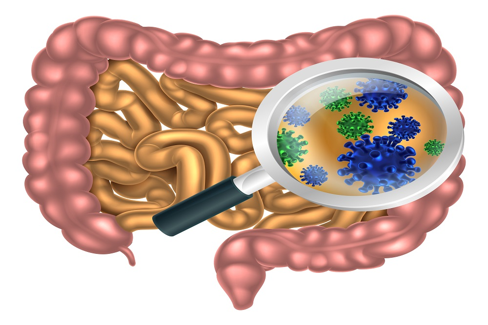 Sleep Loss Tied to Changes of the Gut